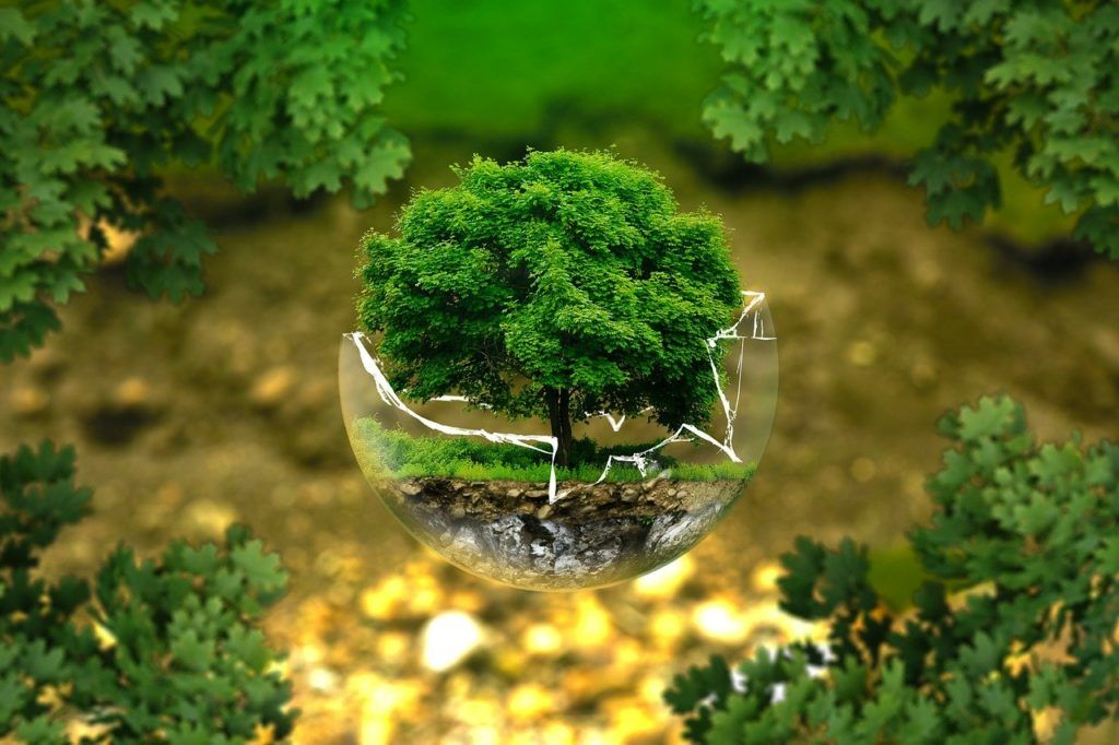 environmental protection, nature conservation, ecology